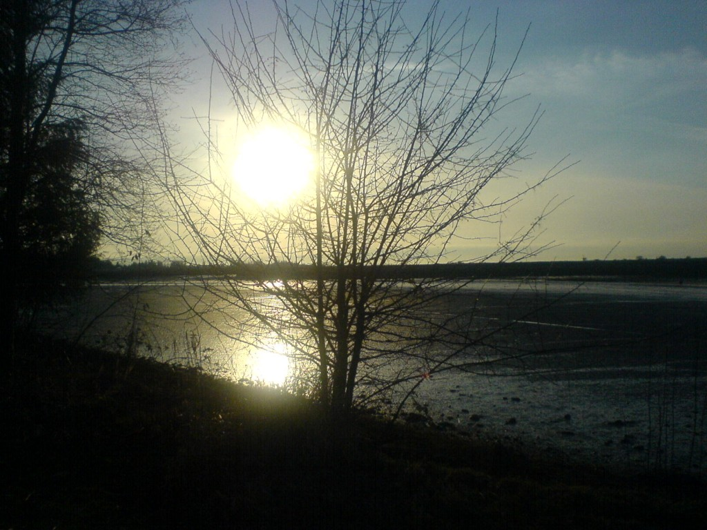 crescent beach, taken february 2008
