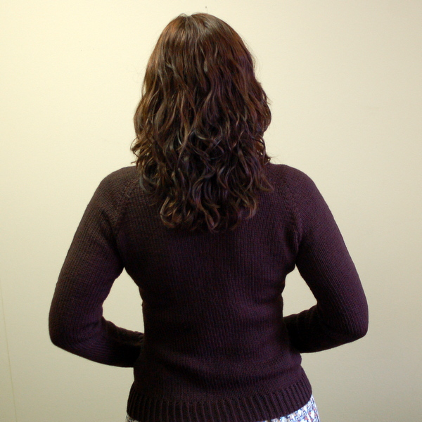chocolate cake sweater, back view