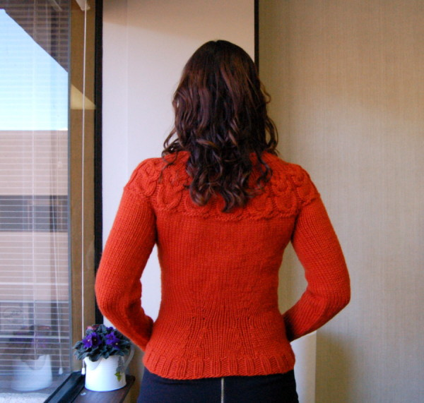 back view of owls sweater