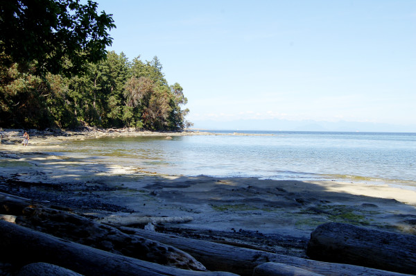 newcastle island beach