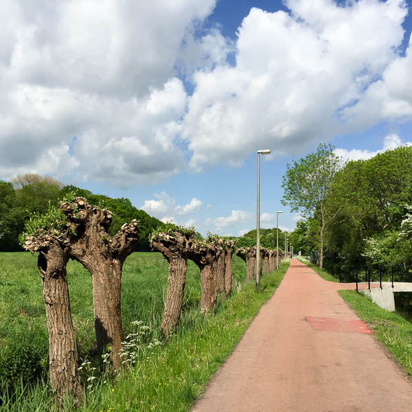 netherlands bike trip photos-2
